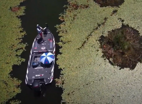 Frog Blow-ups Caught on Drone !  Major League Fishing Pro Gerald Spohrer