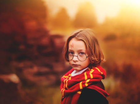 Talking to your children about genetics? Try using 'Harry Potter'