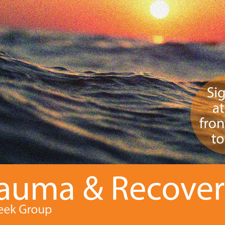 Trauma & Recovery Support Group