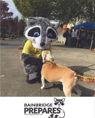 Bainbridge wellness