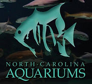 north carolina aquariums.jpg