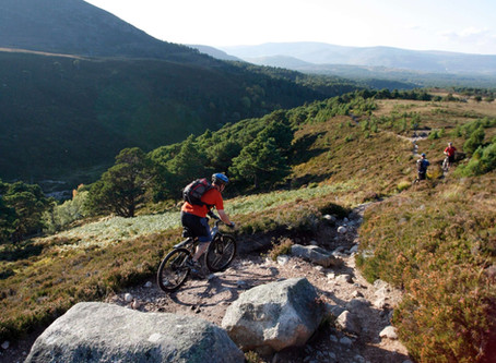 Forest adventures - celebrating Scotland's forests