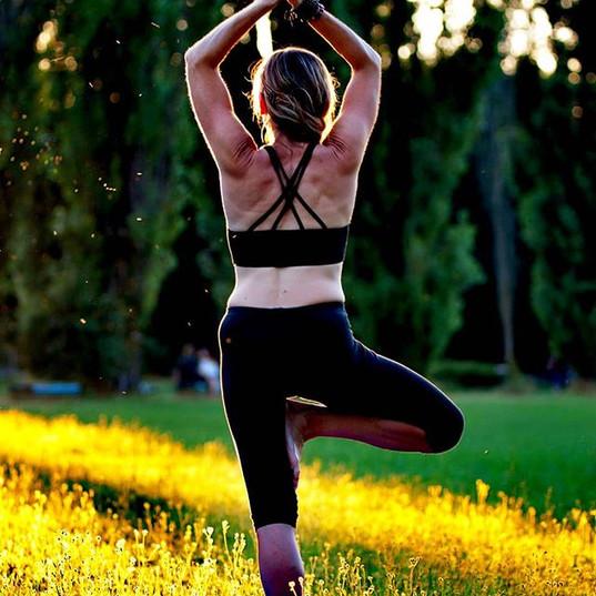 #yoga #yogastyle #yogaeverywhere #treepo