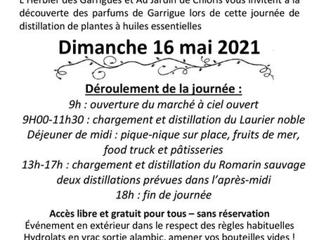 Journée de distillation du Romarin sauvage et marché de producteurs