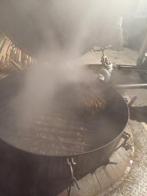 distillation genévrier.JPG
