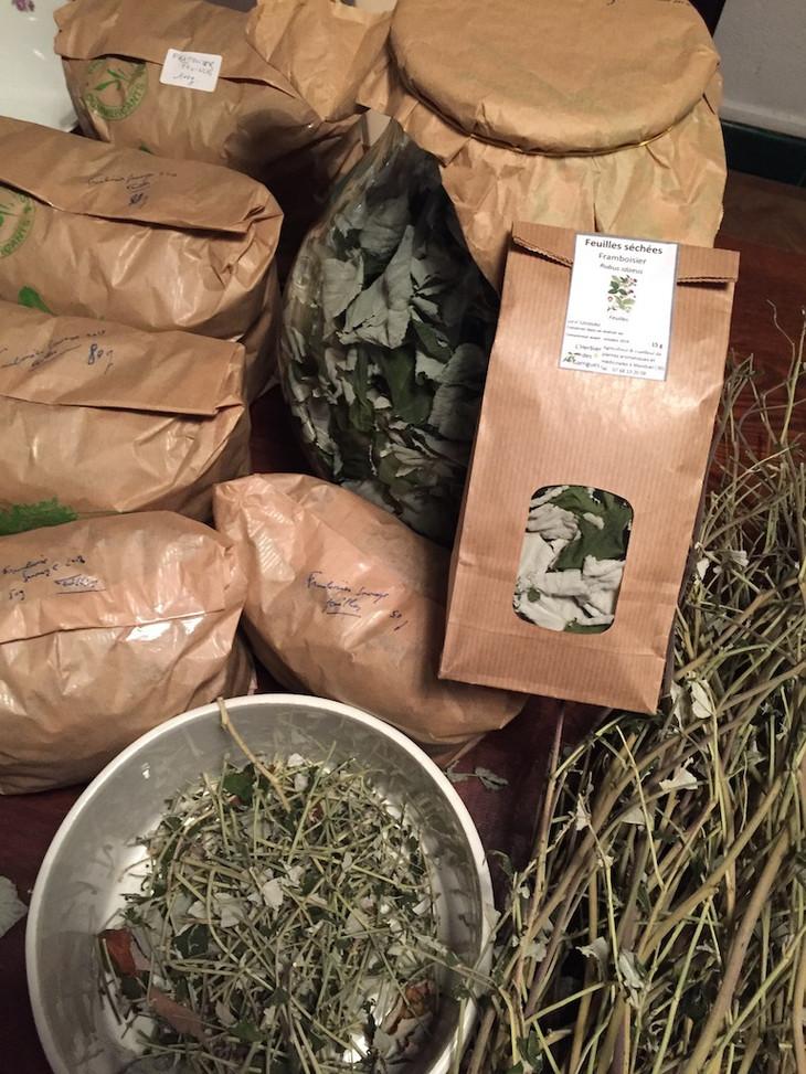 tisanes framboisier Herbier des Garrigue
