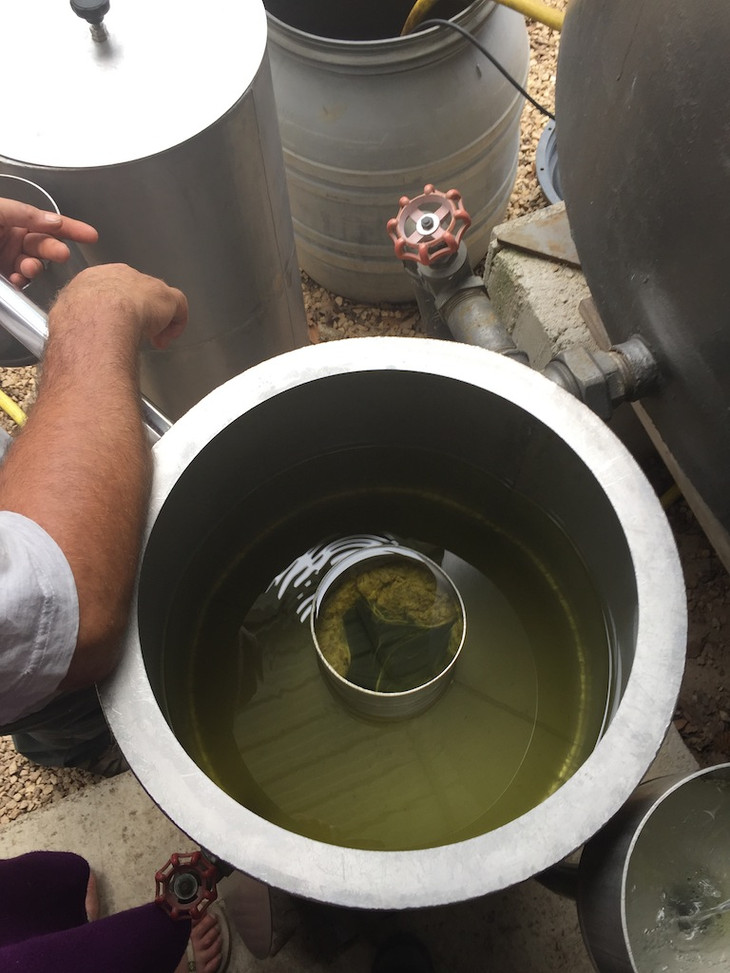 huiles essentielles Lavandin .JPG