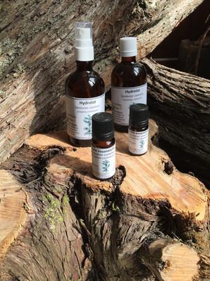 herbiers des garrigues huiles essentiell
