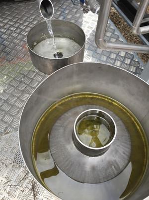 huiles essentielle romarin.JPG