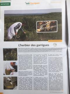 Info Garrigue Article.jpeg