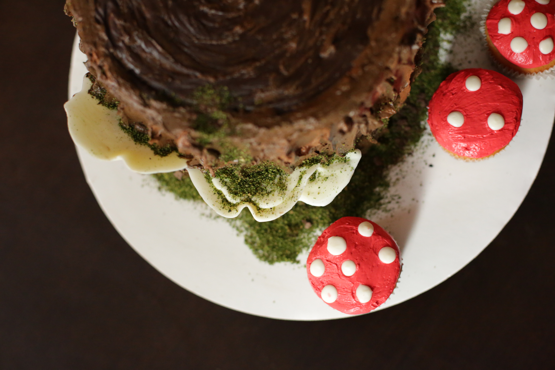 Tree Stump cake and Mushroom Cupcake