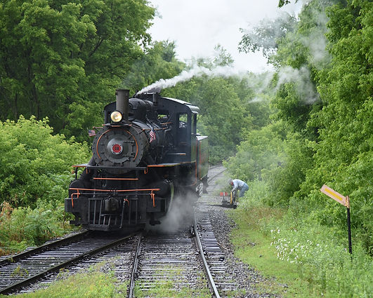 Arcade & Attica Railroad #18 at Curriers