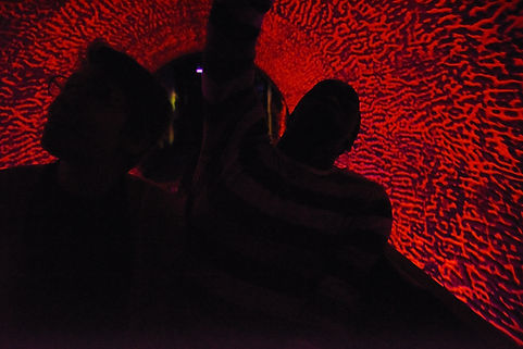 Knoebels haunted roller coaster