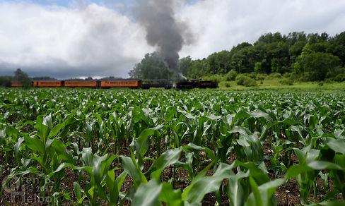 Arcade & Attica Railroad #18 northbound with corn