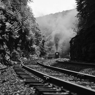 Reading & Northern in the Lehigh Gorge, July 2016