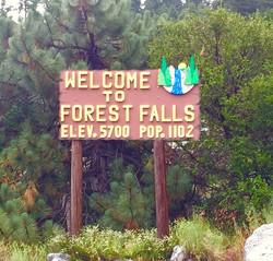 Forest Falls, California