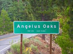 Angelus Oaks, California