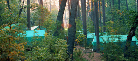 San Jose Family Camp Re-opens!