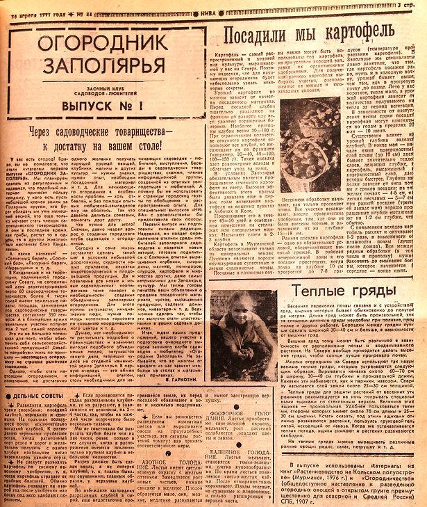 """Ровно 25 лет назад в газете """"НИВА"""" вышел в свет первый выпуск заочного клуба садоводов-любителей """"Огородник Заполярья""""."""