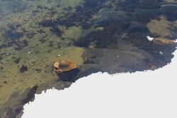 Лазурный берег самого Белого моря