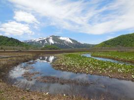 Oze national park, Katashina