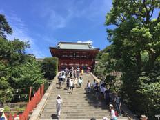 Tsuruoka-hachimangu shrine, Kamakura