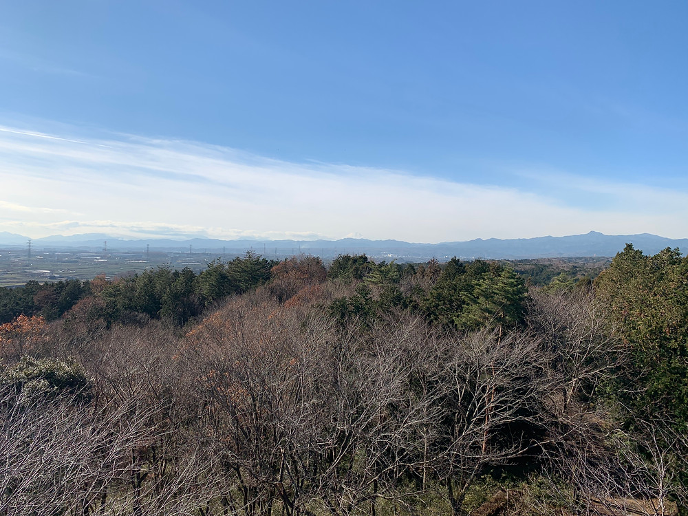 View from Sakurayama lookout tower in Iruma
