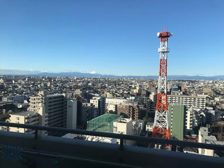 Tokyo metropolis