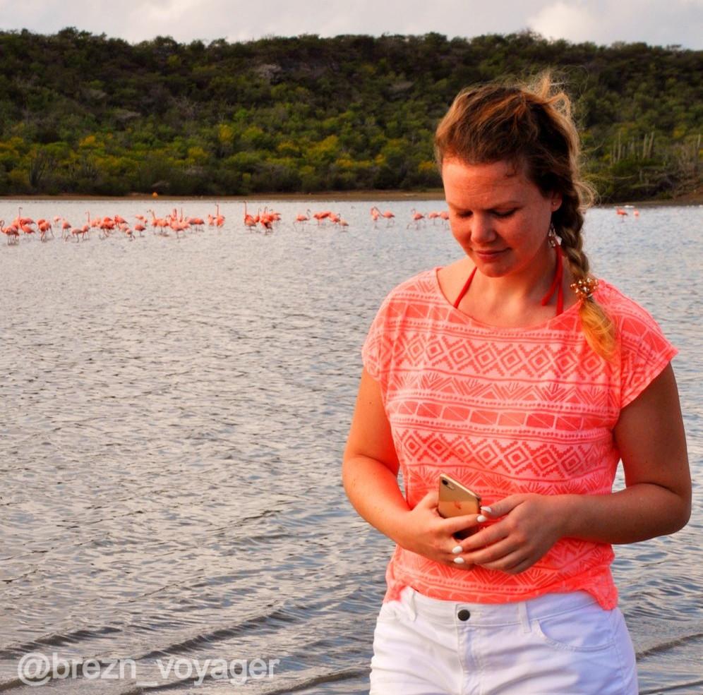 Melli und Flamingos