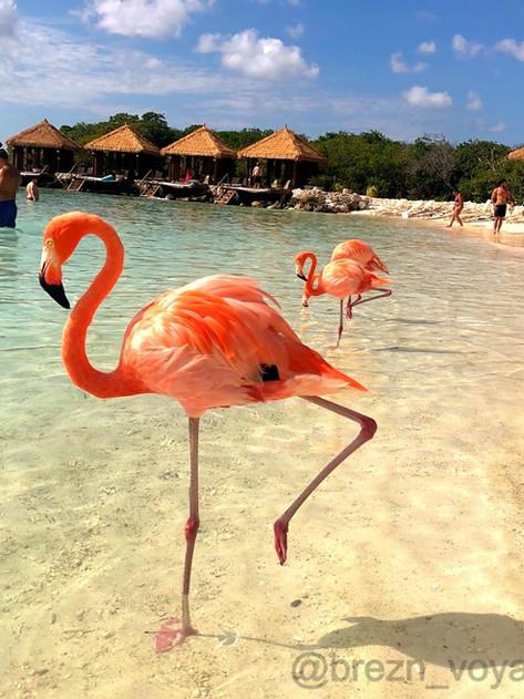 Renaissance Island Aruba
