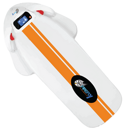 The Jelly Ray electric body board