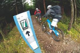 7 Stanes mountain bike venues in South West Scotland
