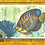Thumbnail: Great Barrier Reef - Pack of 4 Greeting Cards