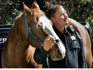 1st Responder Horse Simply Horse Sense Cherie Cassara LMFT 90709