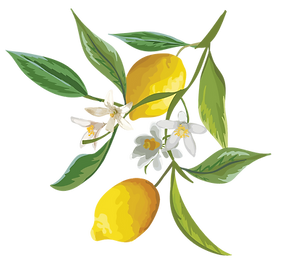 kisspng-lemon-fruit-watercolor-painting-
