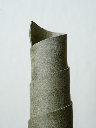 Gray Badalassi Carlo Pueblo
