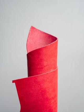 Red Badalassi Carlo Pullup