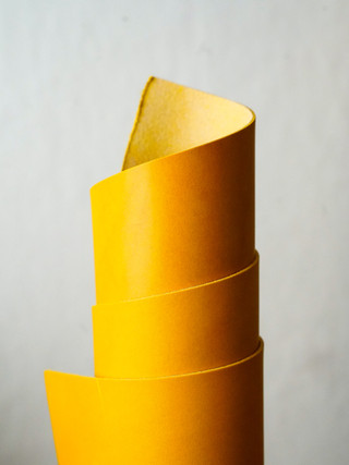Yellow Conceria Walpier Buttero