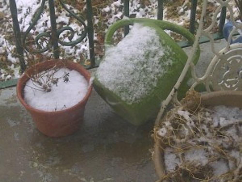 snow on flower pots