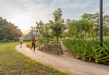 Two parks being developed as a part of a joint initiative to design 100 parks for Ahmedabad, through a CSR activity and partnership between leading and upcoming landscape firms. It aims in providing quality recreational spaces for Amdavadis. Link to Leaf India website http://leaf-india.org/outreach.php