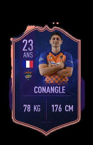 conangle site 2.png