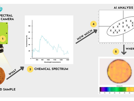 The Future of Food Safety and Quality Control Is AI-Assisted Hyperspectral Imaging