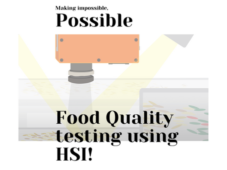 Real-Time Food Quality Analysis Using HSI