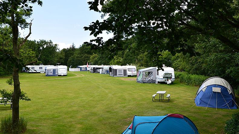 157944_darum-camping1.jpg