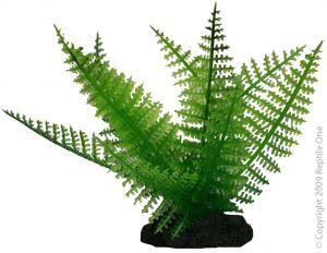 46717 Fern 20cm Reptile Plant