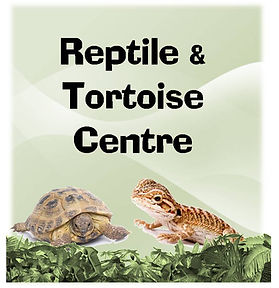 Fish N Things Skewen Tortoise Centre Reptile supply store Swansea Neath