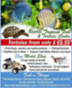 Fish n Things Marine Tropical Coldwater aquarium supply store Swansea Neath