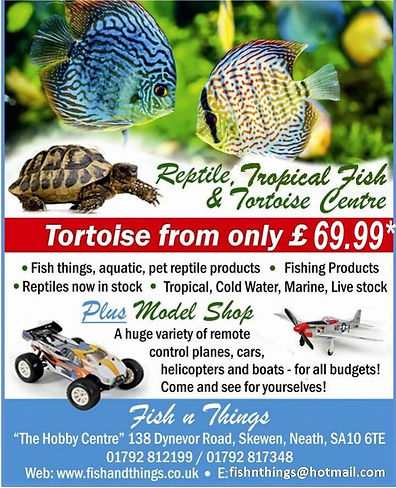 Fish n Things Marine Tropical Coldwater aquarium supply store Swansea Neath