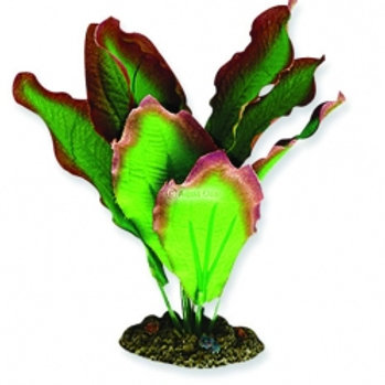 SILK PLANT - AMAZON RED/GREEN 20CM