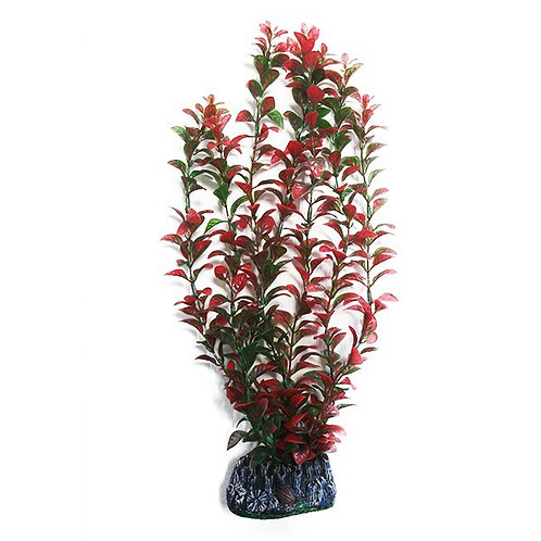 BETTA 40CM PLANT WITH AIRSTONE